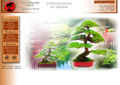 web_chilebonsai